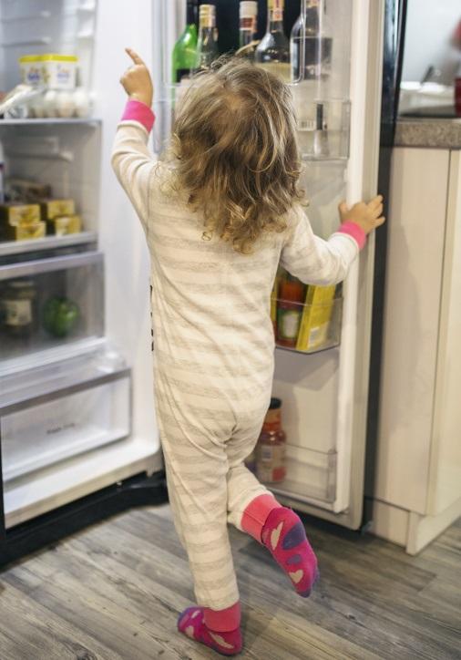 בכתב השירות קיימת החרגה לחלקי פלסטיק בדלת המקרר
